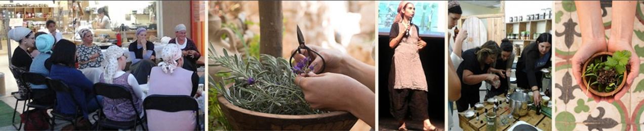 קורס צמחי מרפא ורוקחות טבעית