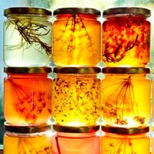 צמחי מרפא אורגנים/טבעיים