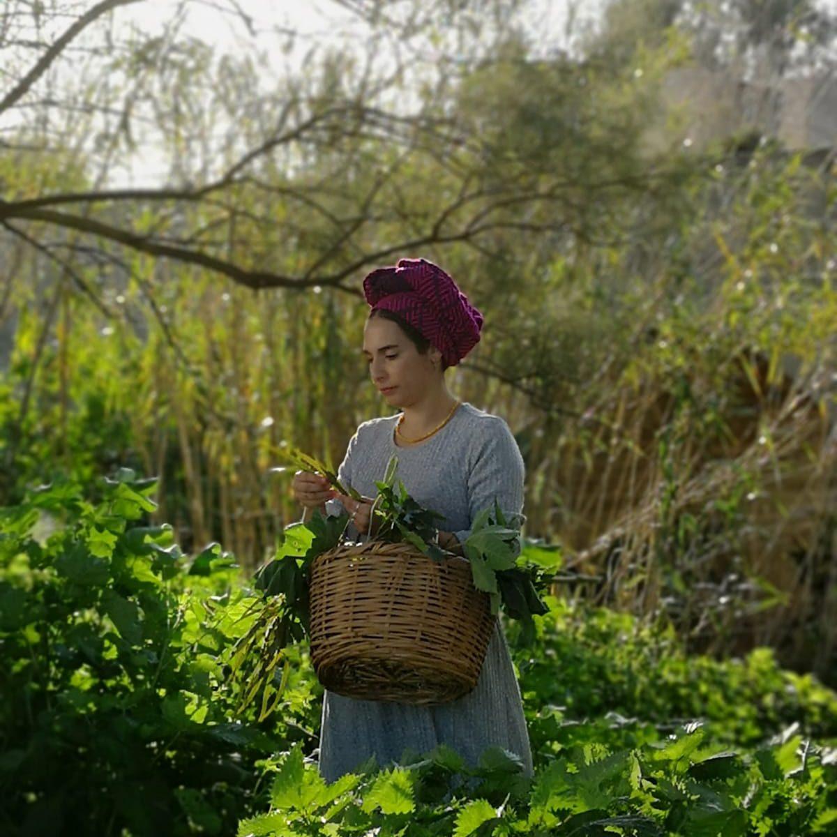 אסתר לחמן מלקטת צמחי מרפא