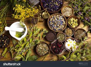 תבלינים וצמחי מרפא